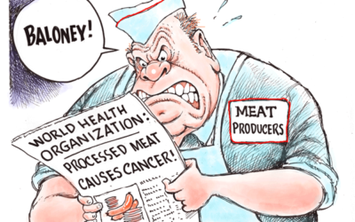 Processed Meat Suggests a Big Problem