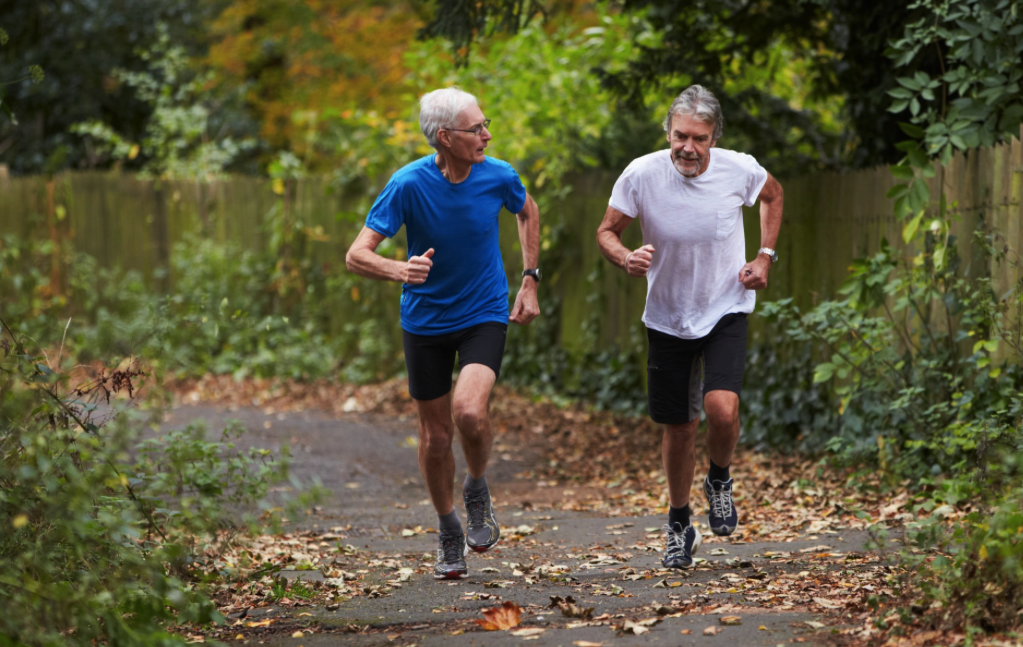 Longevity Benefits of Lifelong Exercise